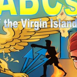 'ABCs of the VI' Book